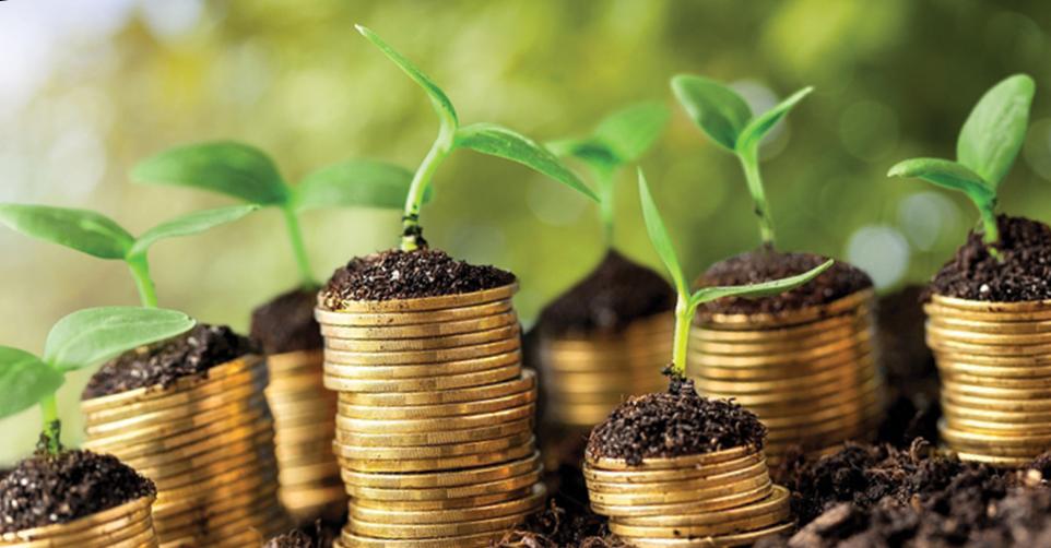 Частные инвестиции и их типы
